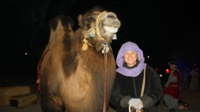 living-nativity-girl-camel